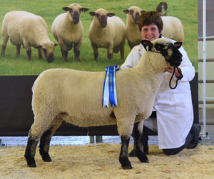 Reserve female and reserve overall from Graham and Judith Galbraith.